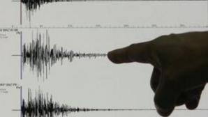 Cutremur puternic în Noua Zeelandă