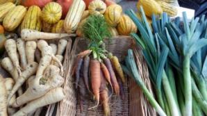De ce alimentele eco-bio îţi pot îmbolnăvi familia