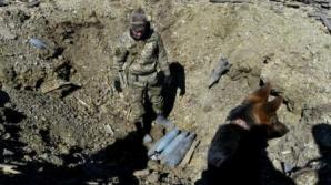 Ucraina: Șase militari au fost uciși în estul separatist în două incidente separate