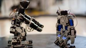 Studenţii de la Politehnică, locul 3 la prestigioasa competiţie RobotChallenge