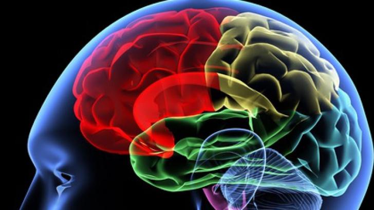 Substanţele chimice din creier care te fac fericit. Află cum să le activezi