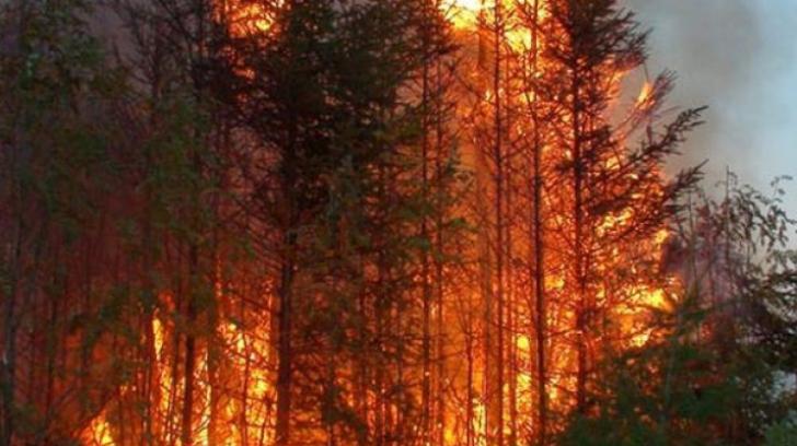 Incendiul din apropierea centralei Cernobâl, stins în mare parte