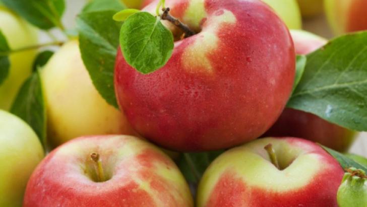 De ce ar trebui să consumăm produse bio? Sfaturile nutriţioniştilor