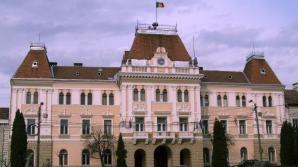 Angajat al Primăriei Odorheiu Secuiesc, omorât de copacul pe care îl tăia