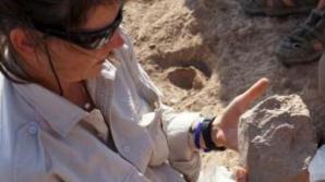 Primele unelte create de om ar putea avea o vechime de 3,3 milioane de ani - studiu