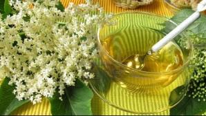 Tratamente naturiste: Beneficiile ceaiului de soc