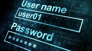 Grindeanu: Securitatea cibernetică și încrederea în serviciile publice, prioritate națională / Foto: capitalotc.com