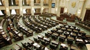 Senatul respinge moțiunea PNL prin care se cerea demisia Rovanei Plumb, pe tema alocației copiilor