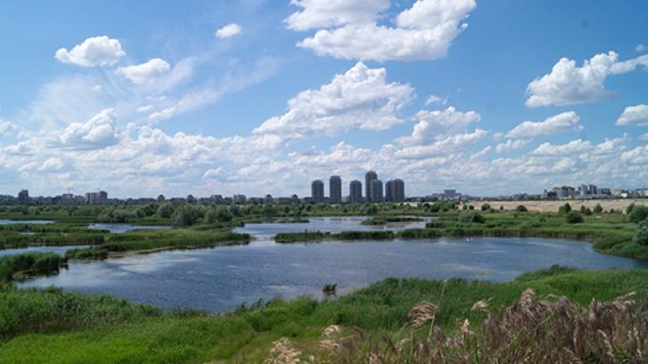 Zi decisivă pentru bucureşteni: Delta Văcăreşti poate fi declarată parc natural