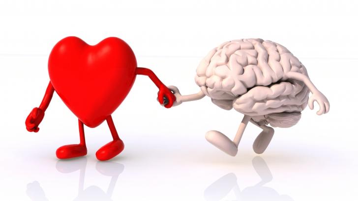 """Cum reacţionează creierul când iubim: """"Beţia iubirii nu este doar o simplă expresie"""""""