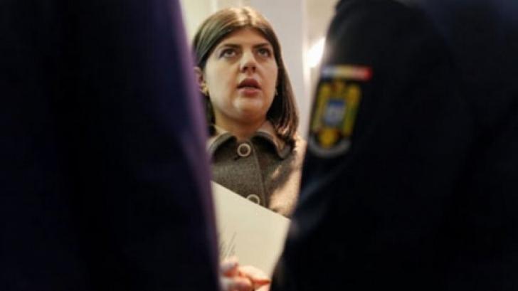 Cazul Rarinca. Tăriceanu cere demisia lui Kovesi şi a Liviei Stanciu / Foto: stiripesurse.ro