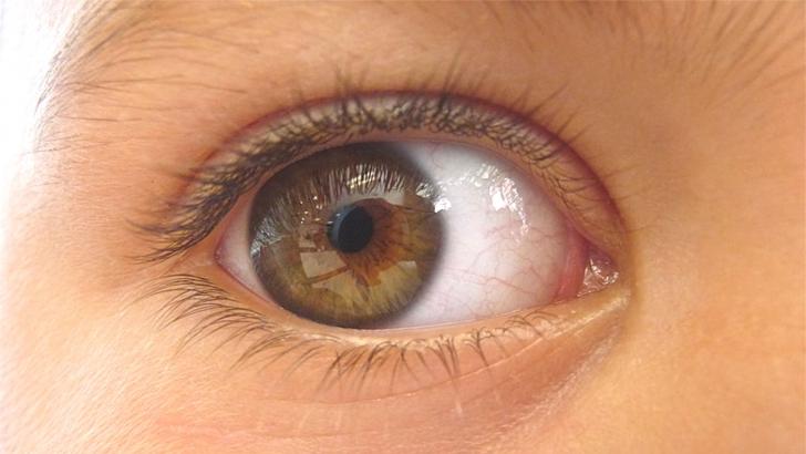 Ai probleme cu vederea? Iată remediul care reduce dioptriile şi regenerează ţesutul ocular!