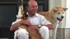 Traian Băsescu a mers, luni dimineaţă, la vila Gogol care i-a fost atribuită de Guvern ca reşedinţă