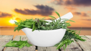 Plante care scad tensiunea arterială