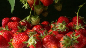Zece beneficii uluitoare ale consumului de căpșune