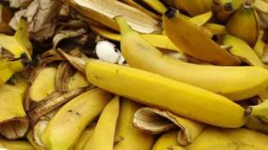 Coaja de banană are efecte miraculoase. Ce poţi trata cu ea