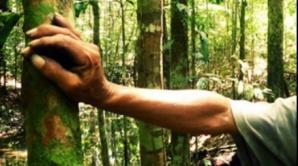 A avut zile! Cum l-au găsit autoritățile pe buzoianul dispărut de 3 zile în pădure