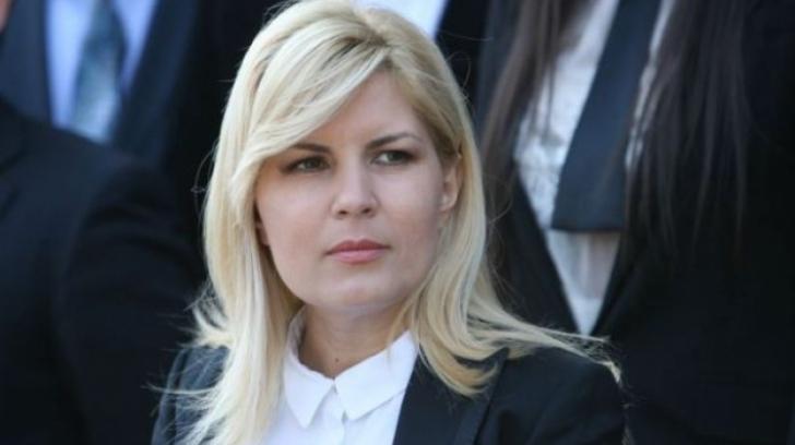 """Elena Udrea contestă în instanță rechizitoriul în dosarul """"Gala Bute"""""""