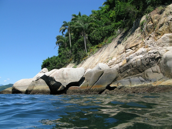 Ilha da Queimada Grande pare un paradis, dar e insula cea mai periculoasă din lume