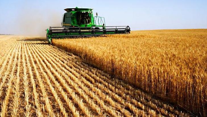 Pământurile agricole, cumpărate de cine dă mai mult