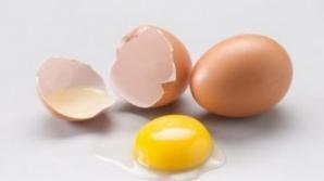 Efectele miraculoase ale gălbenuşului de ou