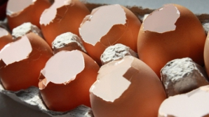 Cum vindeci natural cariile cu ajutorul cojilor de ou