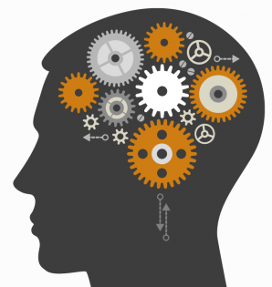 Test: Care este vârsta creierului tău