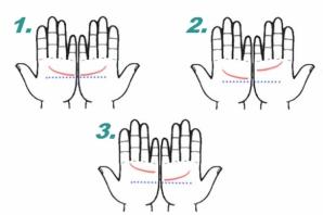Testul palmelor îţi arată sortitul