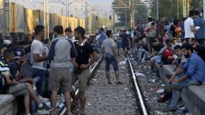Criza imigranţilor, camionul morții: 20.000 de persoane au manifestat la Viena