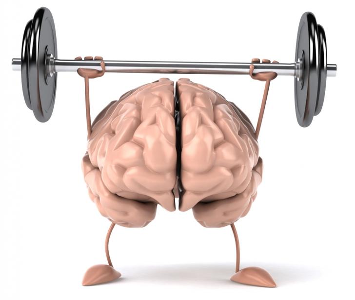 Alimente bune pentru creier. Ce să mănânci ca să creşti inteligenţa