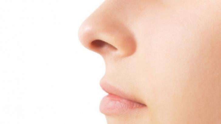 Tu ce nas ai? Iată ce spune forma nasului despre tine!