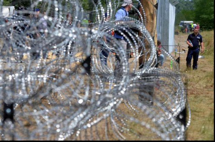 Mobilizare generală a armatei! Ungaria construieşte un nou gard anti-imigranţi la graniţa cu Serbia!