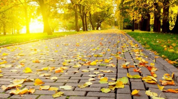 Prognoza meteo pe 3 luni. Cum va fi vremea în lunile septembrie-noiembrie. Temperaturi neobişnuite