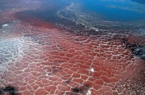 Lacul morții, Natron Lake