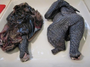 Găina cu carnea neagră. Te va șoca cum arată!