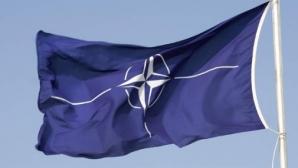 Șeful Statului Major General, la reuniunea Comitetului Militar NATO