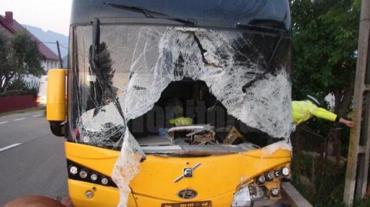 Accident teribil: şoferul unui autocar a murit, după ce a lovit din plin un cal