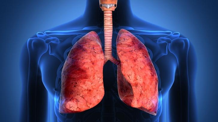Secretul oamenilor care au fumat toată viața, dar au plămâni 100% sănătoși