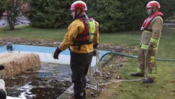 """""""Misiune"""" inedită pentru pompieri. Ce a trebuit să """"salveze"""" dintr-o piscină"""