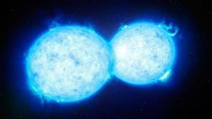 Două stele siameze