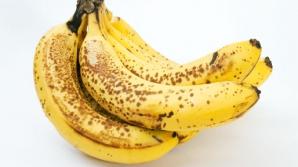 Bananele, pe cale de dispariţie. Iată ce se întâmplă cu marile plantaţii