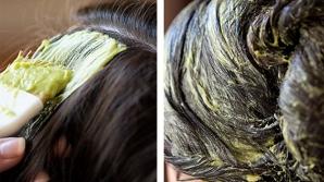 Părul creşte rapid cu acest amestec din 3 ingrediente