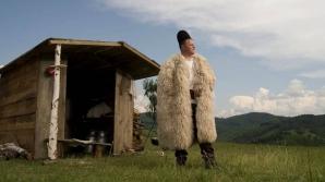 Ghiţă Ciobanul riscă până la trei ani de puşcărie