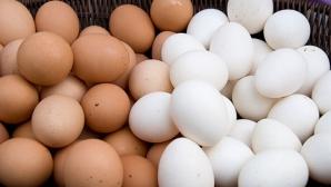 Albe sau maro? Care ouă sunt mai sănătoase