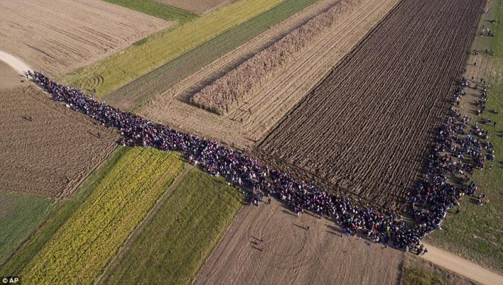 Criza refugiaţilor. Drama imigranţilor în imagini. Drumul prin Balcani, spre vestul Europei