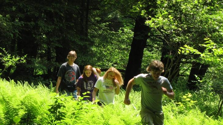 Se jucau în pădure, dar au făcut o descoperire şocantă. Autorităţile au intrat în alertă
