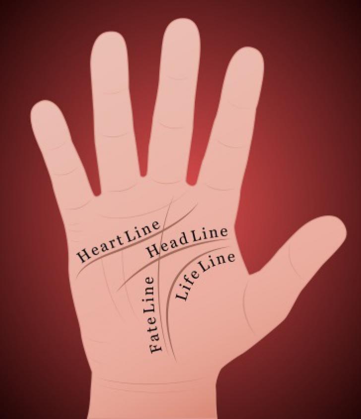 Cea mai importantă linie din palma ta! Ce lucruri incredibile spune despre tine