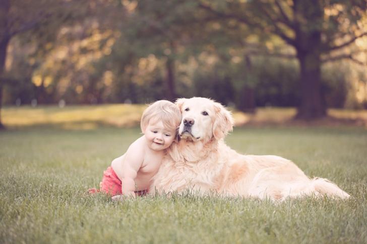 Cinci rase de câini, recomandate pentru copii