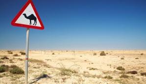 Apă pentru statele arabe