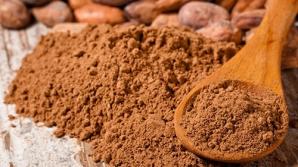 Pudra de cacao